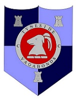 The Half Nelson Logo