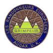 bronze Badge